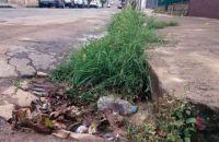 equipamento-urbano-tomado-por-mato-folhas-e-garrafa-plastica-na-rua-princesa-isabel