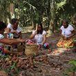 quebradeiras-de-coco-babacu-lutam-pela-preservacao-da-cultura-e-do-trabalho