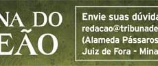 coluna-do-leao